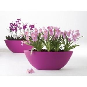 5% Korting op Elho plantenbakken & potten!